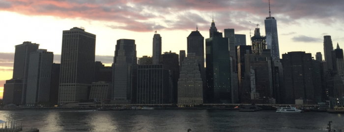 Amazing views of Manhattan from Brooklyn Bridge Park